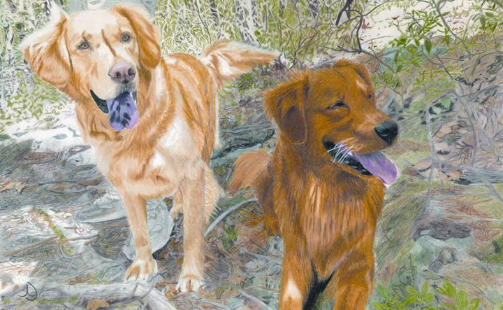 Golden Retriever Dogs - Ann's Pencil Creations