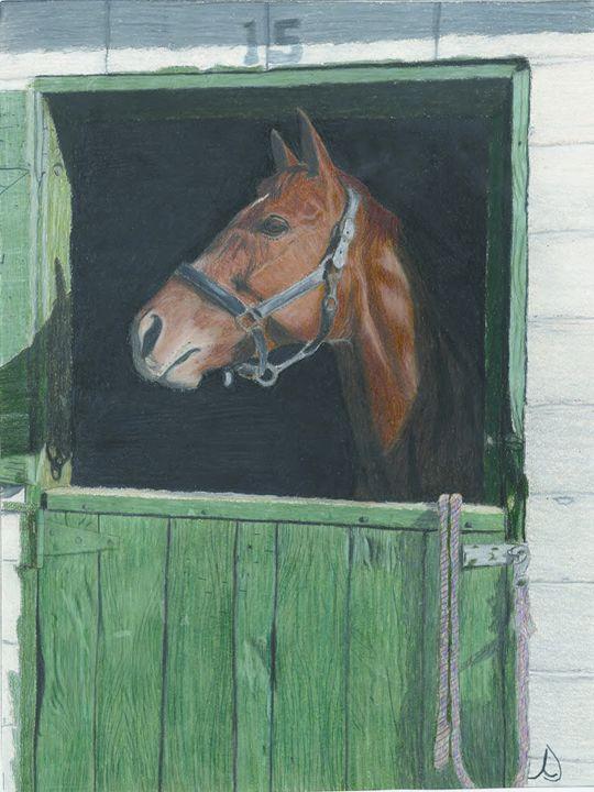 Quarter Horse in Stall - Ann's Pencil Creations