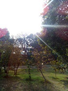 sun creating art