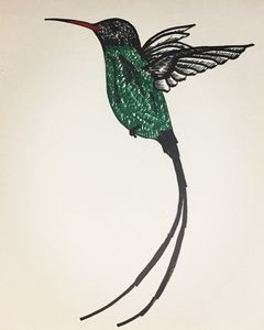 Doctorbird