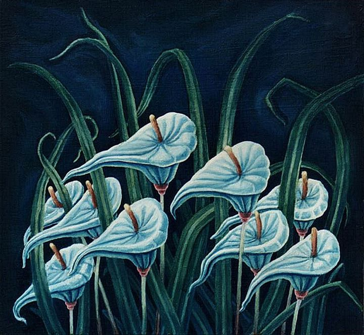 Wait Orchids - Dragan Azdejkovic