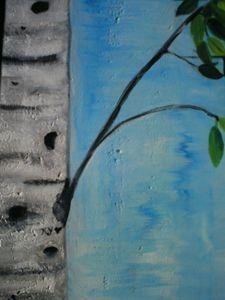Textured Birchwood