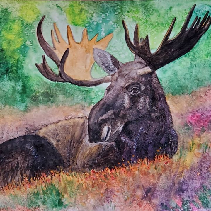 """Moose Meadows"" - Own A Gilby"