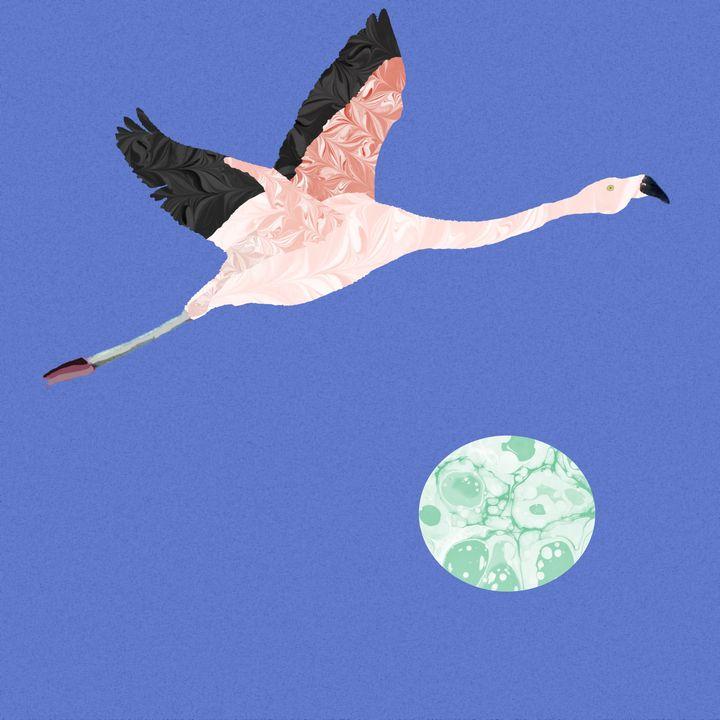 Flying Flamingo - MarbleCloud