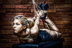 Hogtie - Fine Art of Bondage