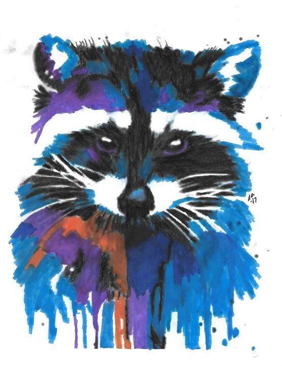 Colorful 'Coon - Stephanie Deskins