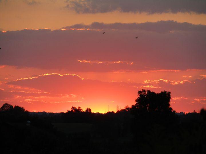 evening sun - tammy  owens