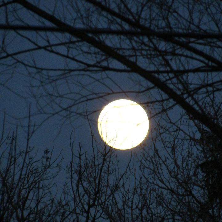 super moon - tammy  owens