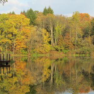 october lake reflection