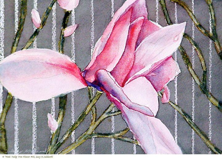 Pink Magnolia Tree Flower #02 - Gary R. Caldwell   CADesign, Art & Photos