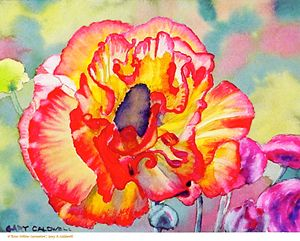 Rose-Yeallow Carnation - Gary R. Caldwell | CADesign, Art & Photos
