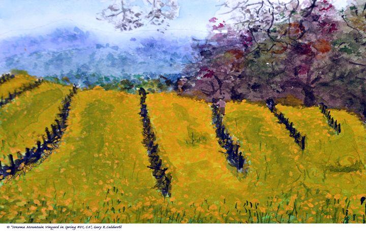 Sonoma Vineyard in Spring, CA - Gary R. Caldwell | CADesign, Art & Photos