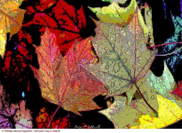 Digi Enhanced-Fall Leaves - Gary R. Caldwell | CADesign, Art & Photos