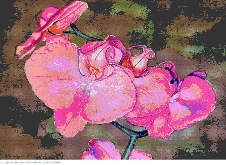 Digitally Enhanced-Pink Orchard #01 - Gary R. Caldwell | CADesign, Art & Photos