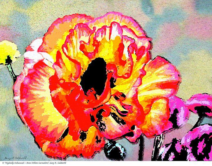Dig. Enhanced-Rose/Yellow Carnation - Gary R. Caldwell | CADesign, Art & Photos