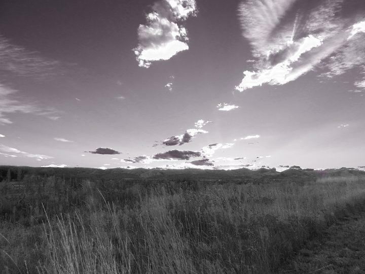 Field in the Rocky Mountains - E.L. Brooke Fine Art & Design