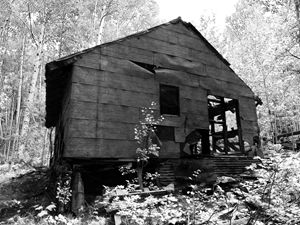 Black and White Miners Cabin