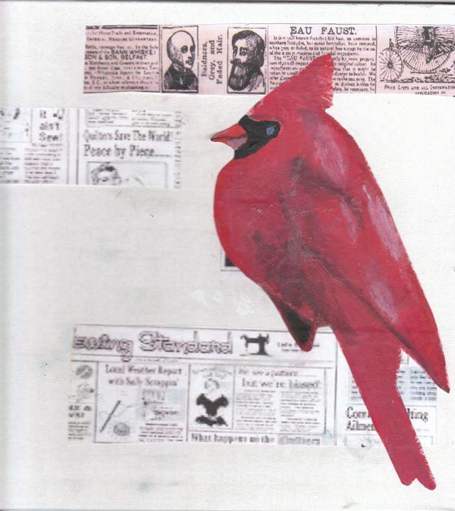 Cardinal - Katie B ART