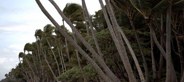 chilli beach - ELDAFYRE