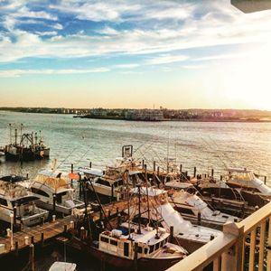 Harbor in June