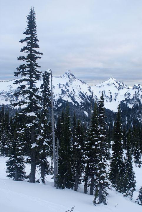 Alpine Verticality - Gregory Patrick Lafferty