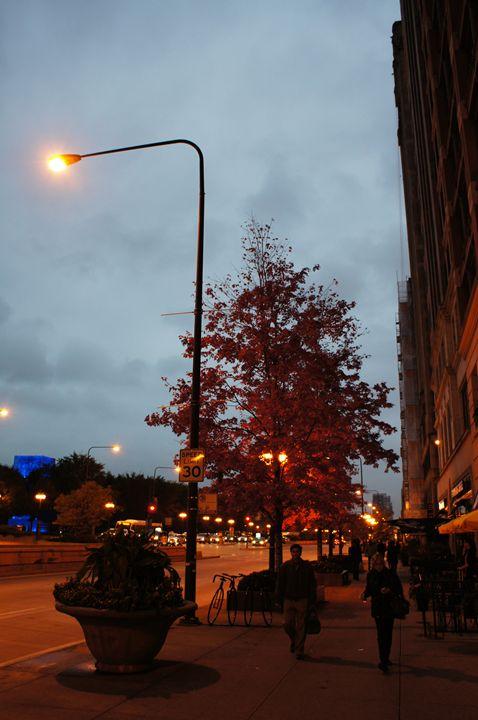 Street Light For Autumn Night - Gregory Patrick Lafferty