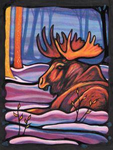 Bull Moose Resting in the Snow