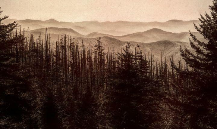 Smoky Mountain Grunge - Mndphoto