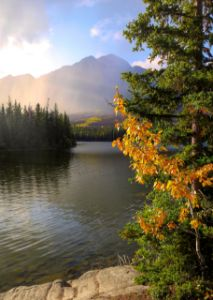 Autumn Moment On The Lake
