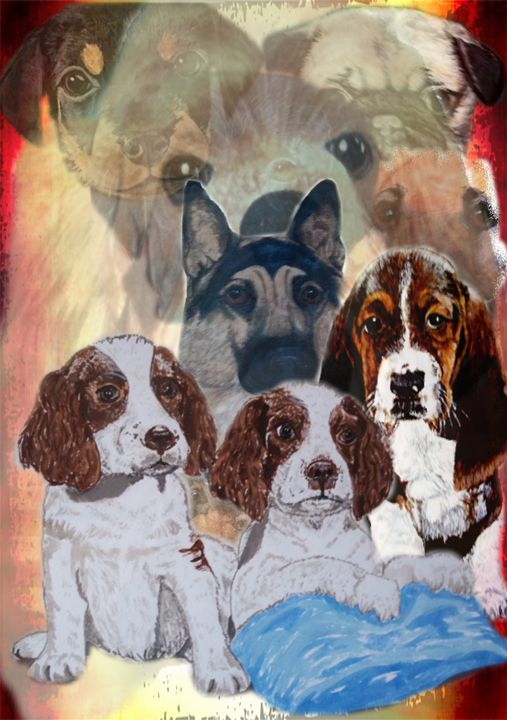 Dog Collage - Animart