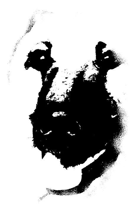 Shepherd - Animart