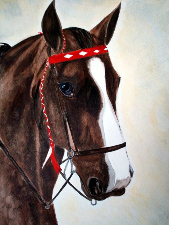 Brown Horse Portrait - Animart