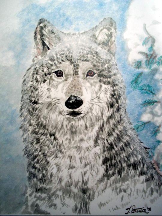 Arctic Wolf - Animart