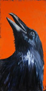Portrait of crow.