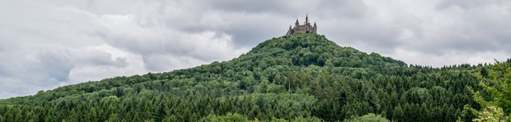 Enchanted Black Forest Castle - Vertical Horizontal Photography