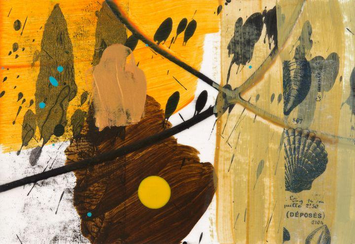 Yellow Dot Shell - Tim Diviny