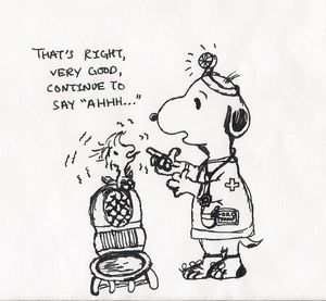 Dr. Snoopy and Woodstock