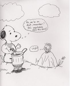 Snoopy and Woodstock Camp