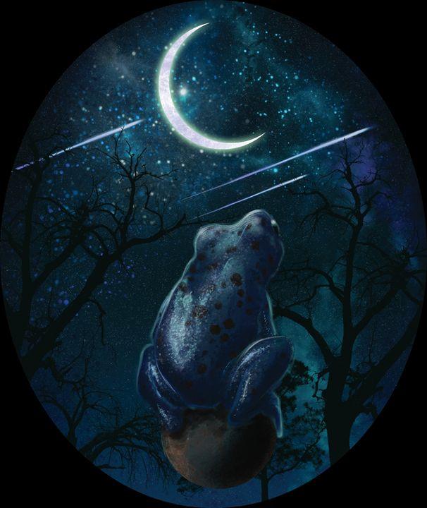 The Night's Magic - Ala M Lockhart