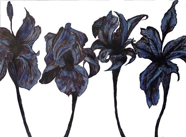 Iris - Art by Dana