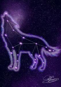 Wolf's Constellation - Soyfki