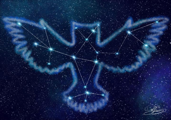 Owl's Constellation - Soyfki