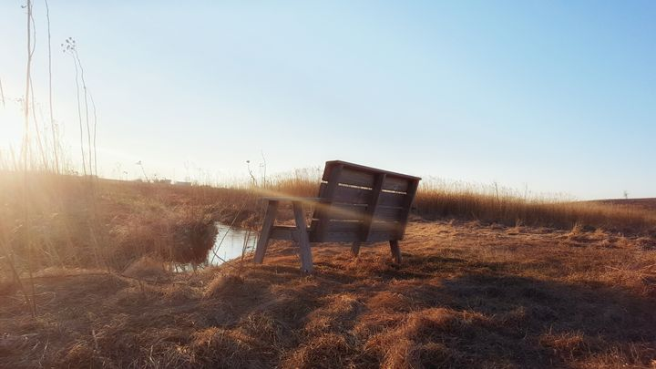 Bench in the Prairie - Pheobe's Photography