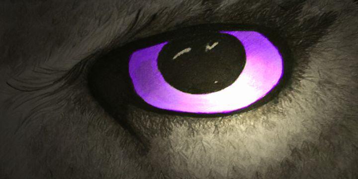 Night vision - Violet Vision Studio