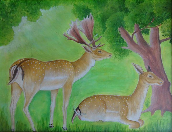 deer - vijay
