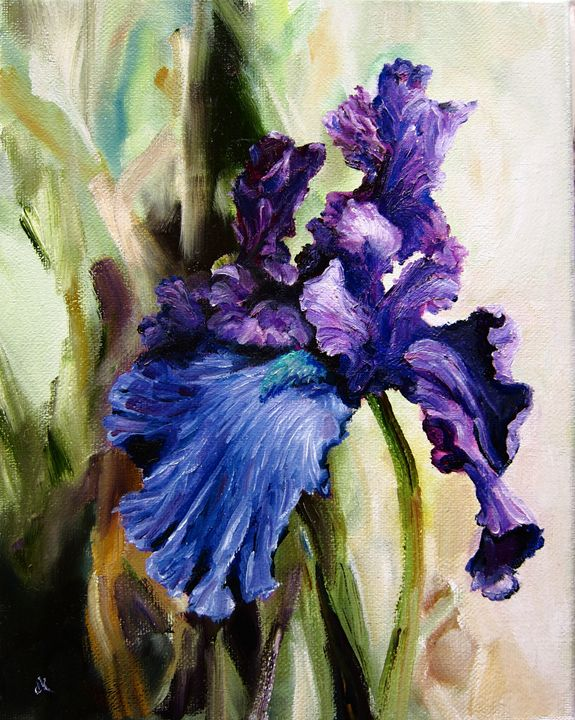 Iris In Bloom - SandhillsArtist