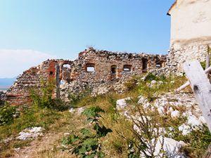 Ruins of life