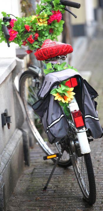 Bike parked in Amsterdam. - oscarcwilliams