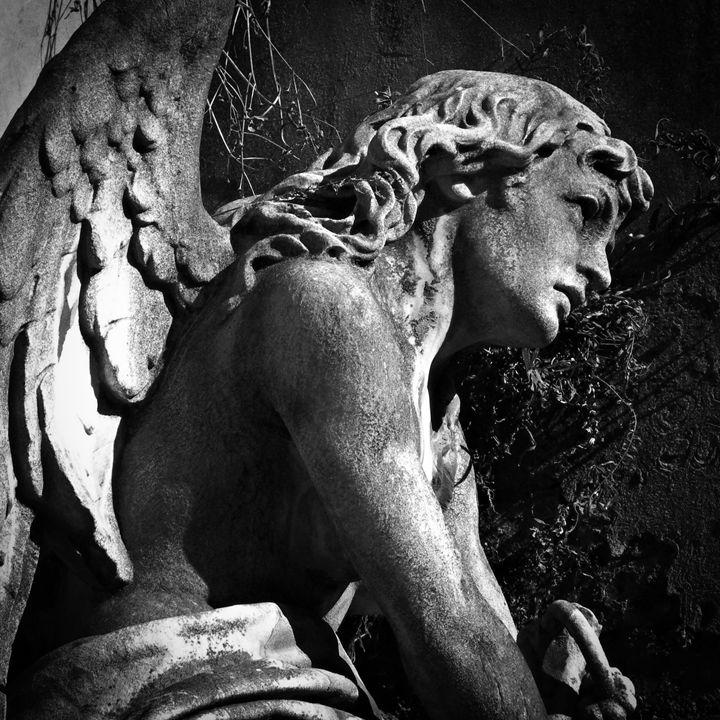 Angel sculpture - Neale Cousland
