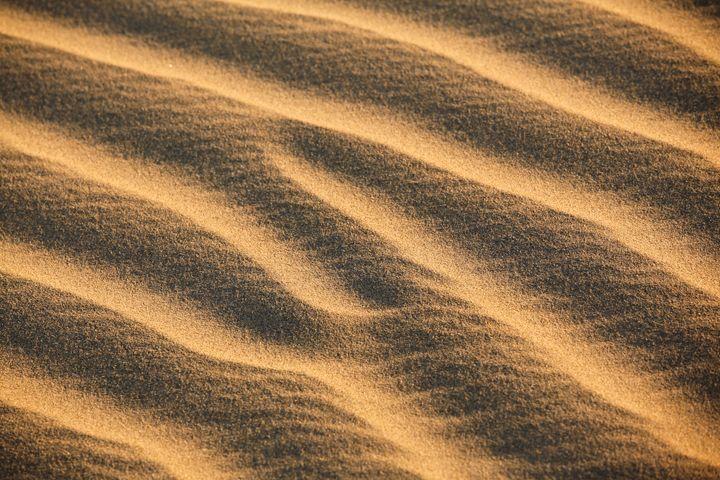Thar Desert, Rajasthan India - Neale Cousland